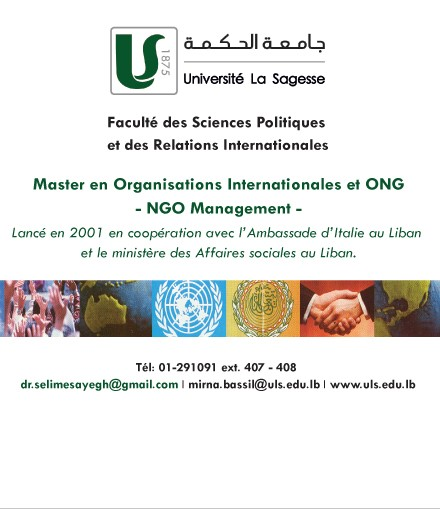 Master en Organisations Internationales et ONG