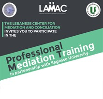 Professional Mediation Training