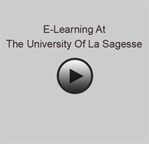 E-Learning At  The University Of La Sagesse